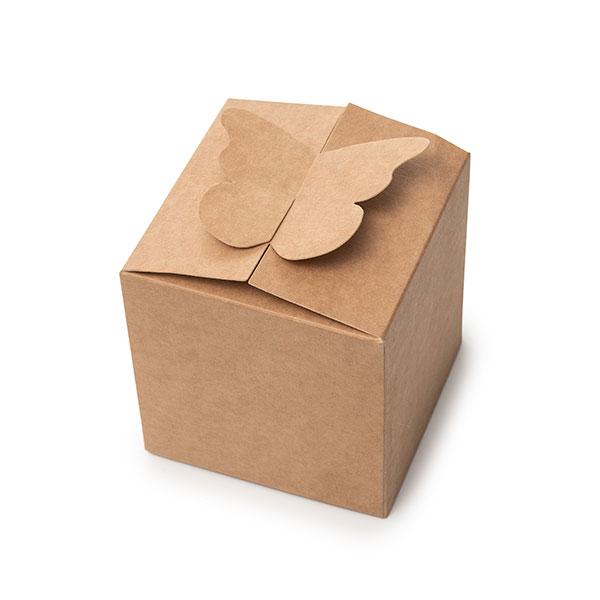 קופסת פרפר